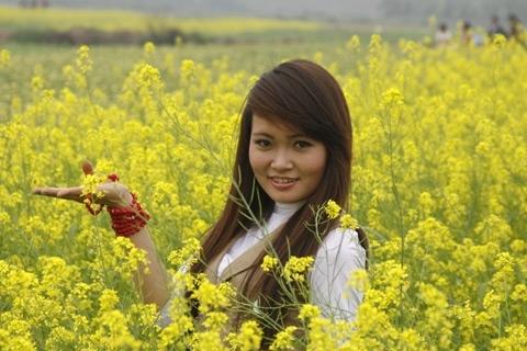 Một hotgirl tạo dáng cùng hoa cải