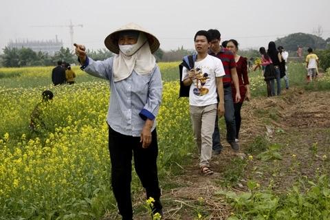 Dẫn khách vào vườn hoa cải để chụp ảnh. Ảnh: Tuệ Minh