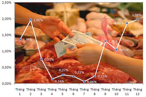 Diễn biến lạm phát trong năm 2010. Số liệu: GSO