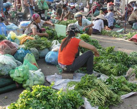 Nhiều loại rau xanh cũng tăng gấp đôi, gấp ba. Ảnh: Xuân Ngọc