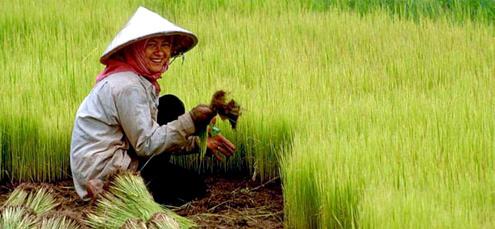Bất chấp sự phát triển của kinh tế, khoảng cách giàu nghèo tại châu Á ngày một lớn. Ảnh: Krati