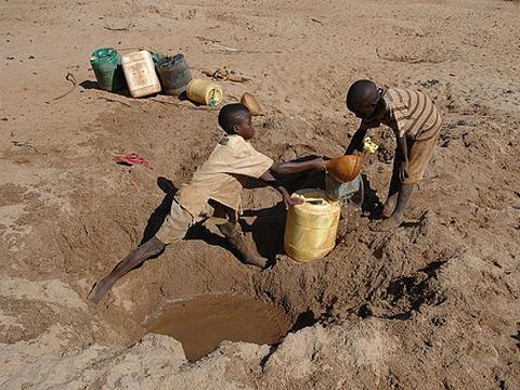 Hạn hán kéo dài và giá thực phẩm thiết yếu leo thang khiến nhiều người Kenya phải thay đổi thói quen sinh hoạt. Ảnh: celsias.com