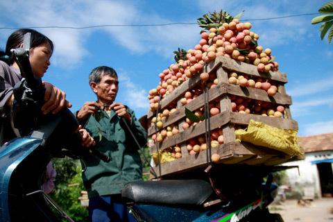 Người dân nông thôn sẽ có nhiều cơ hội tiếp cận vốn vay từ ngân hàng. Ảnh minh họa: Tuệ Minh.