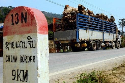 Một tuyến đường sắt sẽ được Trung Quốc xây dựng tại biên giới Lào trong tháng tới. Ảnh: WSJ