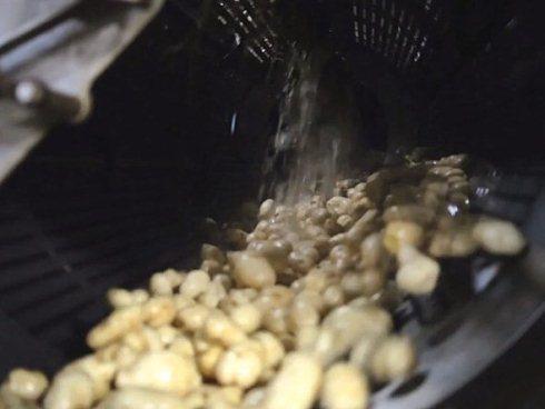 Sau khi được loại bỏ đất bẩn, khoai tây được đưa về nơi xử lý ở McCain, chi nhánh công ty xử lý thực phẩm lớn nhất thế giới tại Canana.