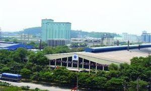 Nhà máy Viglacera Thái Bình hoạt động trở lại