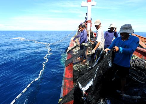 Không chỉ mạnh dạn đóng mới, cải hoán tàu thuyền, các tỉnh miền Trung còn thành lập nghiệp đoàn nghề cá, các tổ, đội sản xuất ngư dân hỗ trợ nhau trong lúc hành nghề vùng biển xa bờ. Ảnh: Trí Tín.