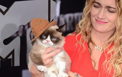 grumpy-cat-8786-1429074028.jpg