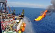 Doanh nghiệp dầu khí lãi lớn dù giá dầu thô lao dốc
