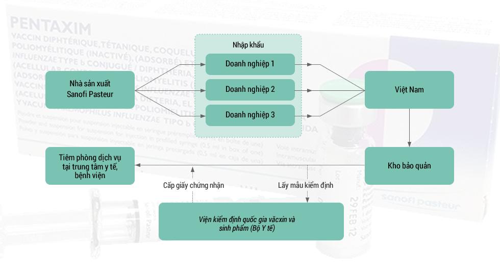 Quy trình nhập khẩu văcxin Pentaxim tại Việt Nam