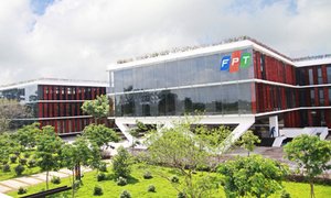 FPT chi gần 800 tỷ đồng trả cổ tức