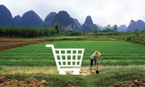 Thương mại điện tử đang len lỏi vào cuộc sống của người nông dân Trung Quốc. Ảnh: Bloomberg.