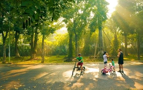 Cả gia đình có thể thong dong dạo chơi dưới những tán cây to của các công viên 4 mùa tại khu đô thị.
