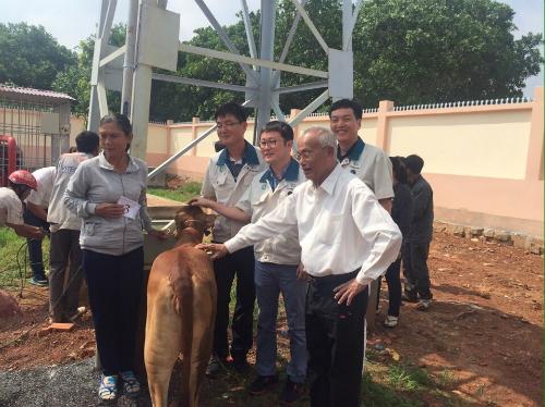 Công ty tặng bò giống cho bà con.