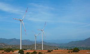 Vỡ mục tiêu phát triển 800 MW điện gió