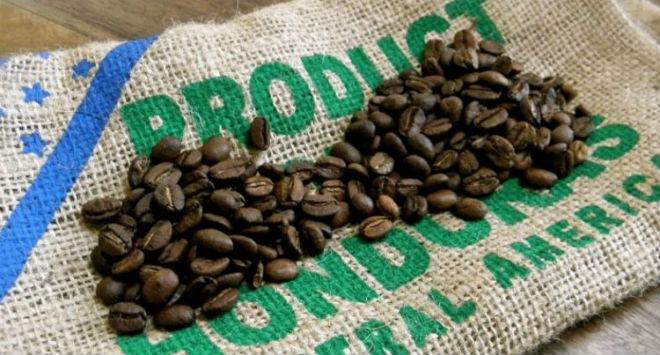 Hơn 1.000 USD một kg cà phê đắt nhất thế giới