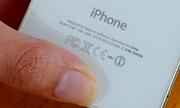 Lý do iPhone không thể sản xuất ở Mỹ