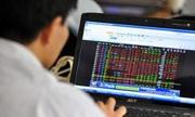 Một nhà đầu tư nữ bị phạt 600 triệu đồng do thao túng cổ phiếu Bầu Đức