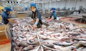 'Vua cá tra' Hùng Vương sắp giải thể công ty địa ốc