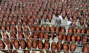 Những nhà máy thực phẩm khổng lồ của Trung Quốc