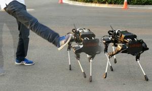 https://kinhdoanh.vnexpress.net/tin-tuc/quoc-te/cho-robot-trung-quoc-gia-30-000-usd-moi-con-3657793.html