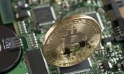https://kinhdoanh.vnexpress.net/tin-tuc/quoc-te/bitcoin-mat-gan-4-000-usd-tu-dinh-3682306.html
