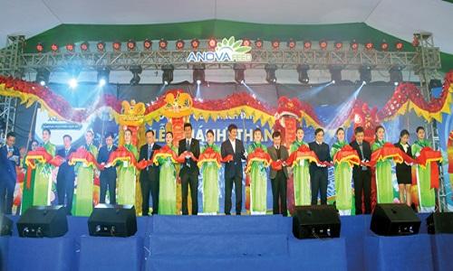 Cắt ổ khánh vách nhà máy Anova Feed Hưng Yên.