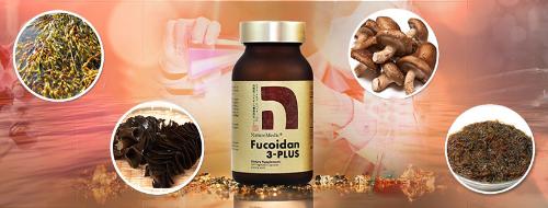 Sản phẩm Fucoidan 3-Plus.