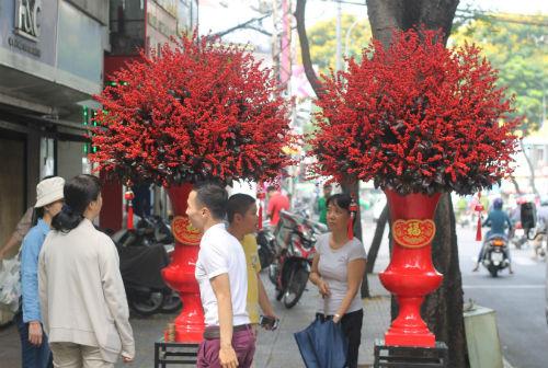Cặp đào đông có giá 160 triệu đồng đã được khách mua. Ảnh:Flower Box