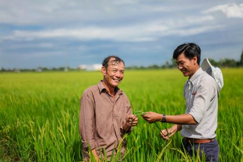 Thuốc bảo vệ thực vật mang về khoảng 1.790 tỷ đồng lãi gộp cho Lộc Trời.