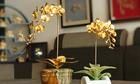 Karalux ra mắt bộ sưu tập quà Tết hoa lan mạ vàng