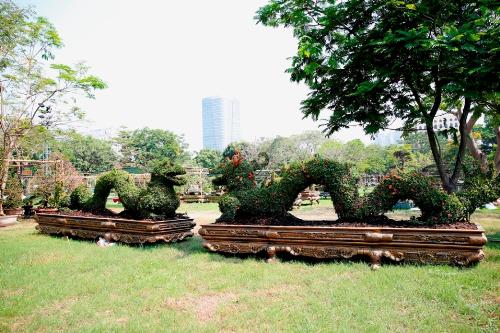 Ngoài bonsai, bộ sưu tập của anh Huy còn có các loại cây cảnh tạo hình khác như cặp rồng dài 12 mét và các cặp tỳ hưu dài 7 - 9 mét một cặp. Với kinh nghiệm gần 30 năm, anh Huy cho biết, các tác phẩm đòi hỏi độ khó nghệ thuật, sự chăm chút và tỉ mỉcao như bonsai.