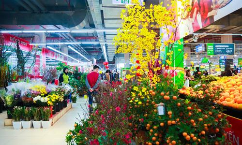 Ngoài mặt hàng thực phẩm, nhiều siêu thị đẩy mạnh hoạt động bán cây cảnh trưng Tết. Ảnh: PV