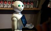 Robot Nhật 'xuất khẩu lao động' sang Singapore