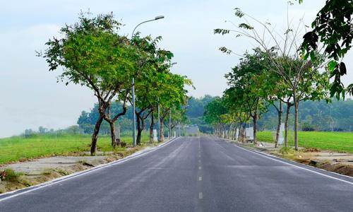 Người Việt mê đất, gom mua đất bằng mọi giá dù phải sống thiếu thốn, cõng thêm nợ nần vì tin rằng có đất là có hy vọng đổi đời. Ảnh: K.A