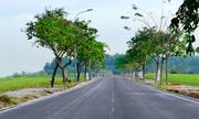 Lý do người Việt thích gom mua đất