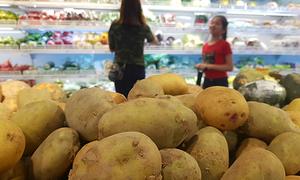 Sau củ cải, đến lượt khoai tây rớt giá mạnh