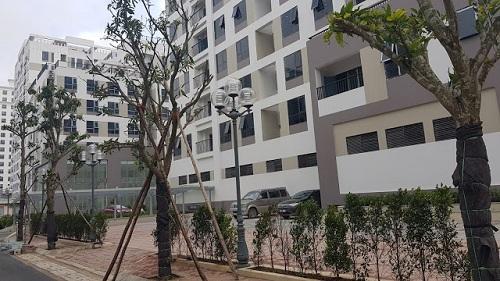 Căn hộ chung cư trở thành sự lựa chọn lý tưởng cho các gia đình sinh sống tại thành phố những năm gần đây. (Hình ảnh: Chung cư Valencia Garden  Long Biên)
