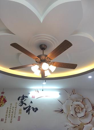 Một mẫu quạt cổ điển khác là Lotus Light có nămđèn, tính năng quay haichiều dùng cho cả mùa hè và mùa đông. Thiết kế lấy ý tưởng từ hoa sen - quốc hoa Việt Nam,quạt làm từ chất liệu thép không gỉ mạ đồng. Giá bán 6,5 triệu đồng phù hợp phân khúc khách hàng tầm trung.