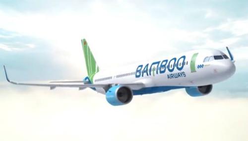 Bộ nhận diện thương hiệu của hãng hàng không tư nhân mới lấy cảm hứng từ cây tre Việt.