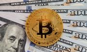 https://kinhdoanh.vnexpress.net/tin-tuc/quoc-te/bitcoin-that-su-dang-gia-bao-nhieu-3740698.html