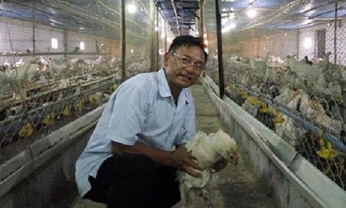 Ông Tấn bên chuồng gà. Ảnh: Dân Việt