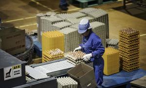 Nuôi gà lấy trứng công nghiệp bằng robot