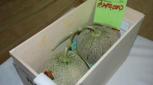 Cặp dưa lưới được bán với giá 3,2 triệu yên hôm 26/5. Ảnh: AFP