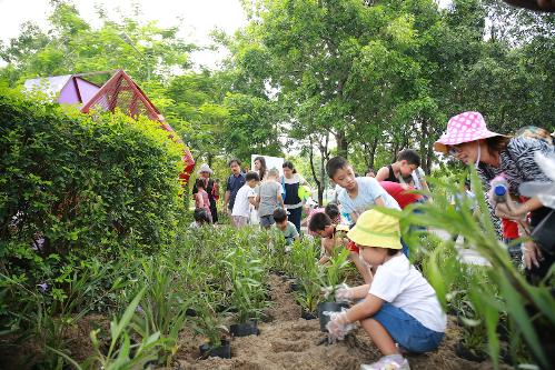 Cư dân Gamuda Land tham gia ngày hội vì môi trường - 4