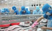 Chỉ còn dưới 3 doanh nghiệp xuất cá tra sang Mỹ