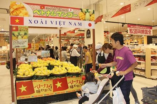 Giá xoài của Việt Nam tại các siêu thị Nhật Bản khoảng 8-10 USD/kg. Với giá như vậy, một quả nhỏ có giá khoảng hơn 70.000 đồng và quả lớn khoảng 100.000 đồng, chưa tính thuế.