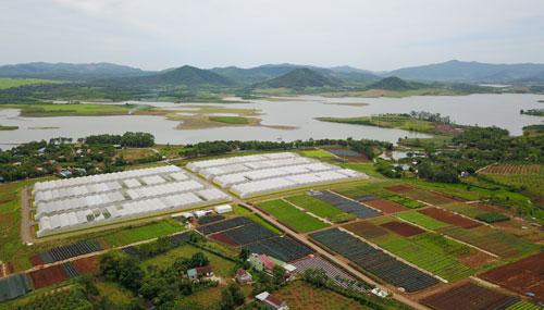 Toàn cảnh một trang trạirau củ quả FVF của Tập đoàn TH nhìn từ trên cao.