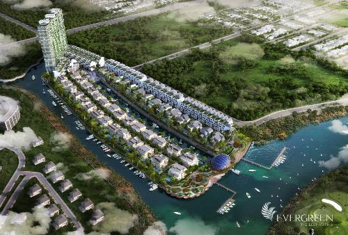 Vision Land phân phối dự án cao cấp Evergreen - 1