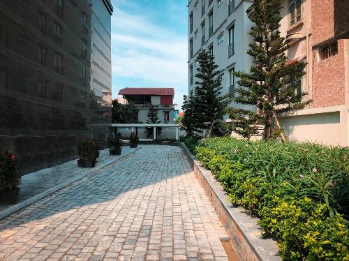 Cây xanh cũng phủ bóng bên những cung đường giao thông nội bộ tại dự án. Liên hệ: Tập đoàn Tân Hoàng Minh, 24 Quang Trung, Hoàn Kiếm, Hà Nội. Website.Hotline: 0906275359